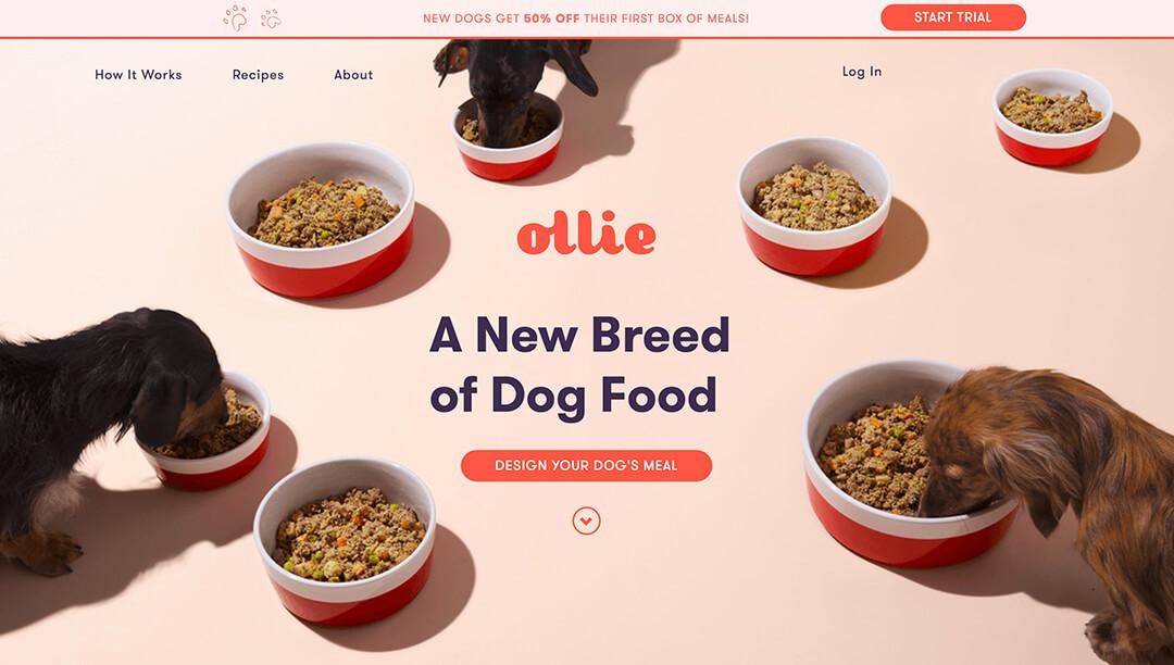 Ollie - Tailored, Fresh Dog Food